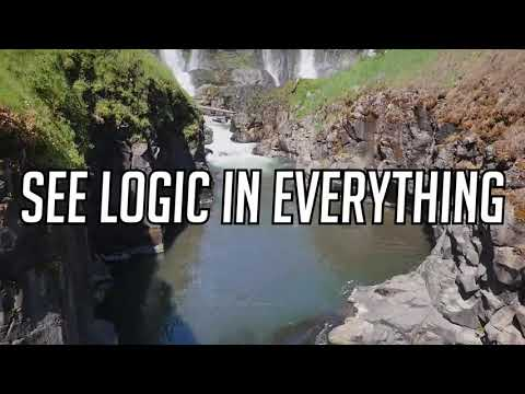 See logic in everything - Logic nation