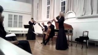 Johann Friedrich Fasch, Concerto d-Moll FWV L:D6 Poco, Allegro, Largo, Allegro
