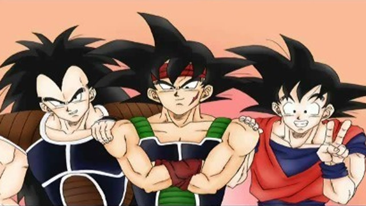do bardock and goku ever meet that one person
