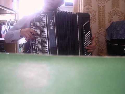 Мамба на аккордеоне