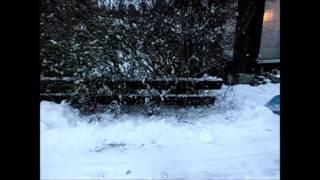 Første snøfall 8des.2013