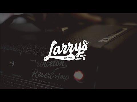 Larrys  And Sound  Authorized Fender Dealer