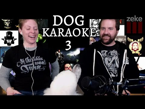 Dog Karaoke: The Chain by Fleetwood Mac