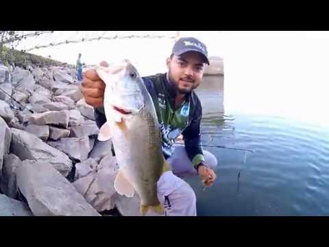 Wild Anglers pasando el fin de semana en la Presa Los Mimbres