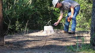 Tree Stump Removal - Nice Explosion  ⚠️ Not a how to video ⚠️