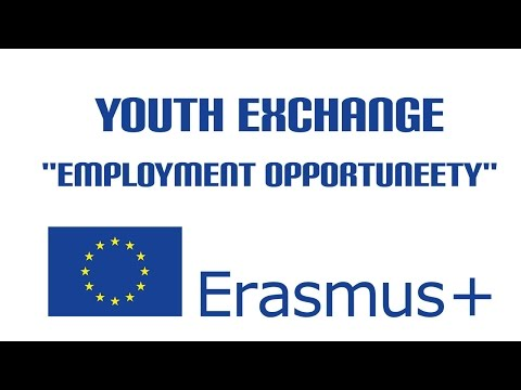 Youth Exchange Employment OpportuNEETy