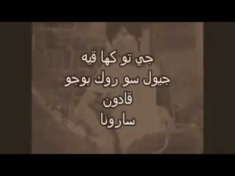 Alaa  Ahmed