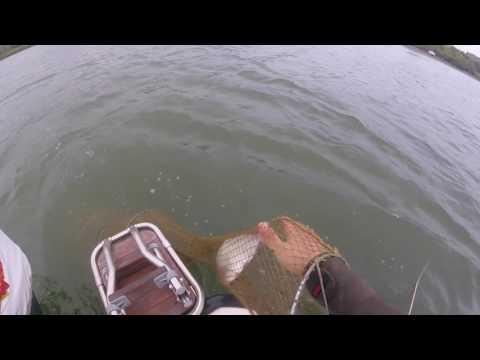 Рыбалка в Ростове-на-Дону: Первый пробный выпуск