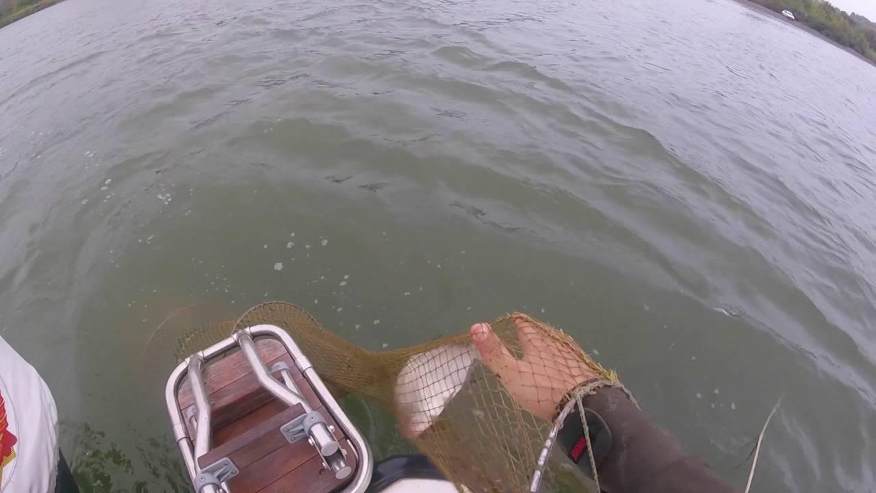 Где ловить рыбу на дону в ростове на дону