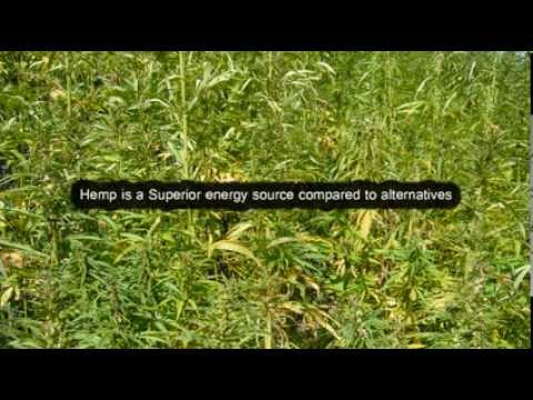 Canada could be Energy Independent Hemp Fuel Sustainable Cheaper Living Suppressed