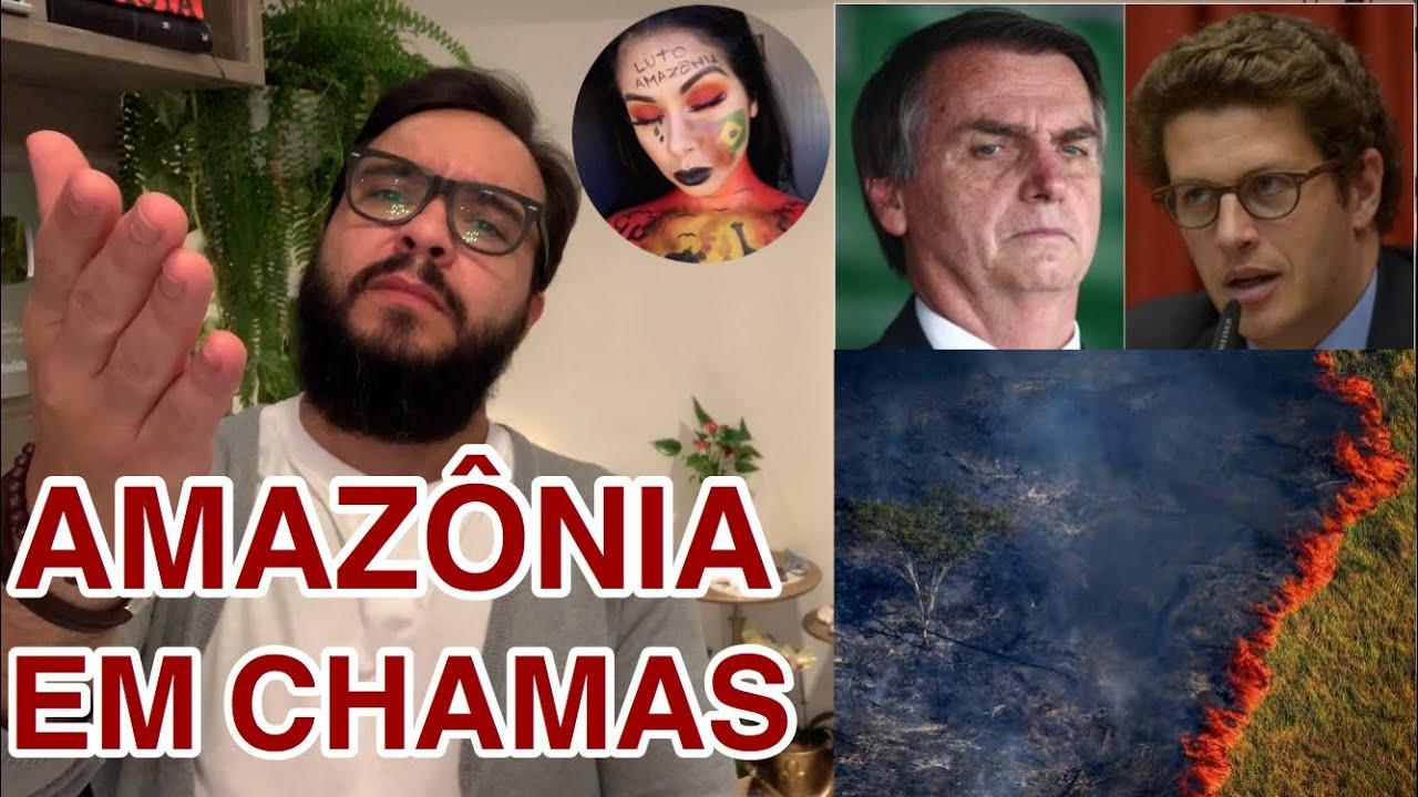 Amazônia, BolsoNero e as ONGs! De quem é a culpa?