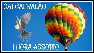 ASSOBIO CALOPSITA - CAI CAI BALÃO