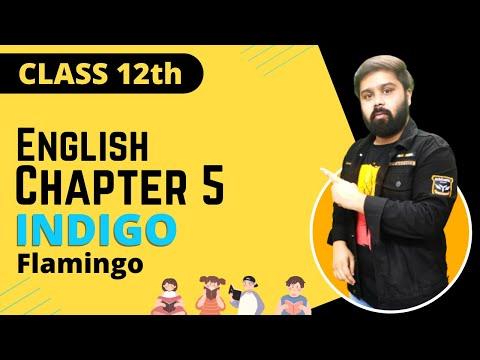 indigo class 12 in hindi and english