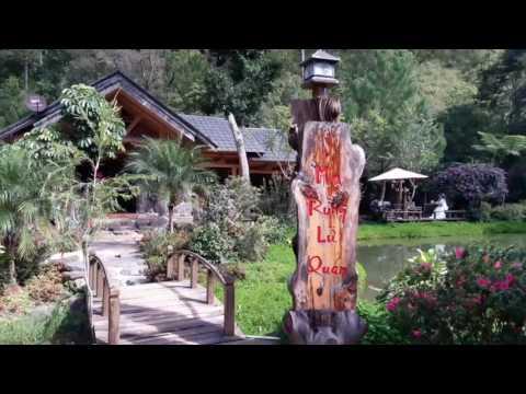 Ma rừng lữ quán - Đà lạt