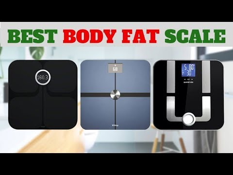 5 Best Body Fat Scale (Based on Accuracy)