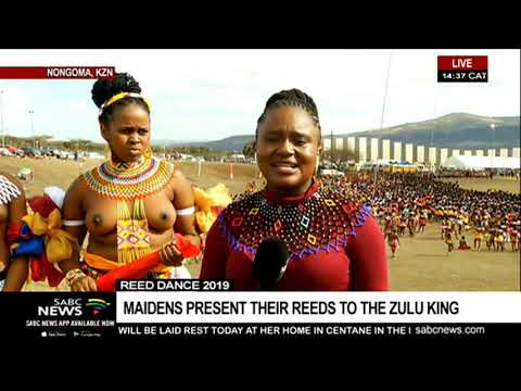 Hundreds Of Maidens Attend Reed Dance In KZN