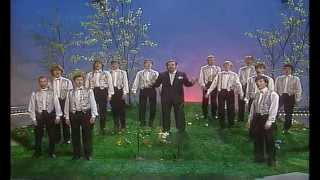 Die Goldene 13 - Ein schönes Land ist unser Heimatland 1986