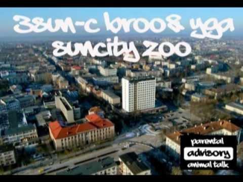 3SUN-C BROO & YGA - SUNCITY ZOO