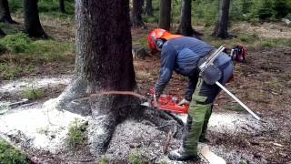 Garden and Forest Original YouTube Video - Chainsaw Husqvarna 562 XP