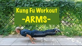 Epic Martial Arts Workout 2 of 4 - ARMS