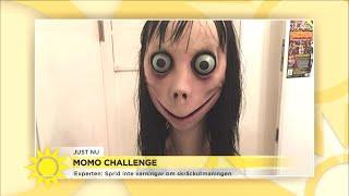 Experten: Sprid inte varningar om skräckutmaningen - Nyhetsmorgon (TV4)