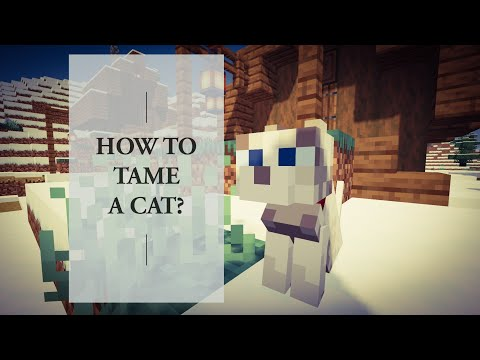 how-to-tame-a-cat-in-minecraft-1.15.2