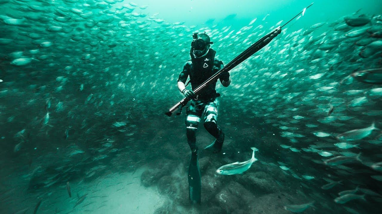 exploring-giant-baitball-deep-in-ocean-unbelievable