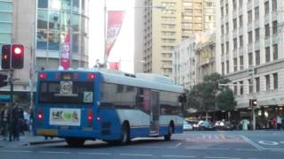 Buses At Qvb (queen Victoria Building) Sydney, Nsw (p1)