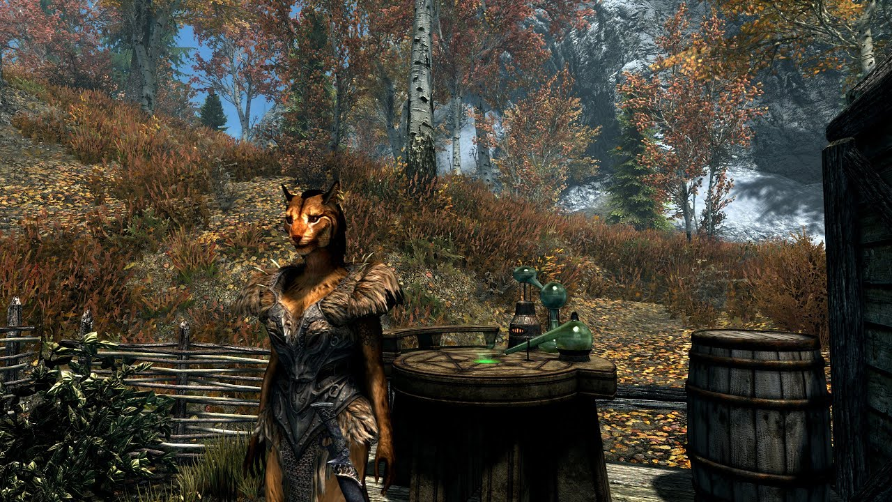SkyrimSE  The Alchemist #2  Bears!!