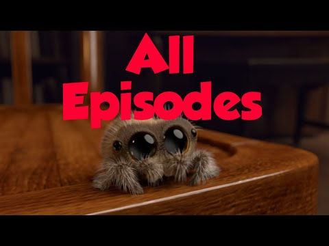 Lucas the Spider All Episodes