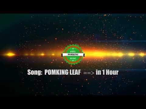 Pomking Leaf (1 Hour) - PFM [Pomking Free Music]