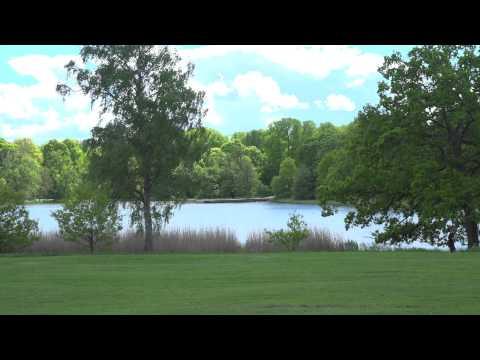Hagaparken - Royal Haga Park Stockholm [4K]  - Sony a7s + Atomos Shogun