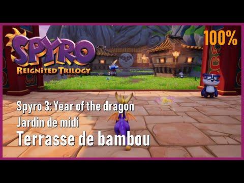 Spyro 3 Year Of The Dragon Jardin De Midi Terrasse De