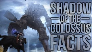 10 Shadow of The Colossus Facts You Probably Didn't Know