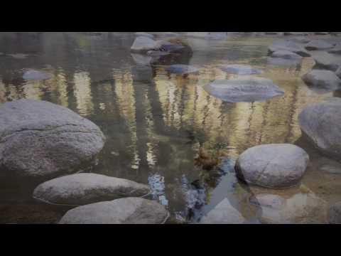 De steen - Bram Vermeulen (met tekst)