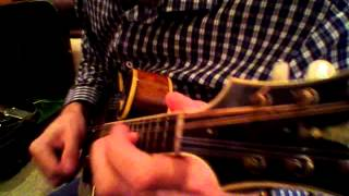 Download lagu Mandolin Brothers Chris Thile with the Lloyd Loar F5 MP3