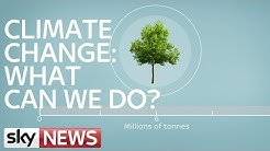 Climate Change: What Can We Do?