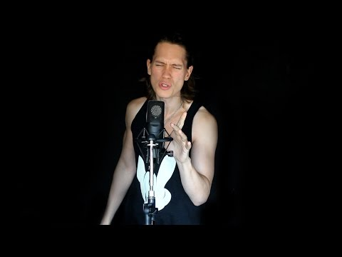 ALADDIN - ARABIAN NIGHTS (Metal Cover)