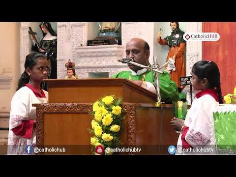 Mass from St  Mary's Basilica, Secunderabad, TS, INDIA 02 12 17