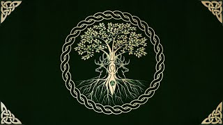 Celtic Psytrance Meets Pirate Metal