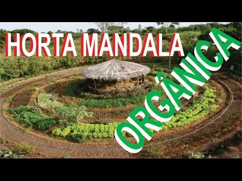 Horta orgânica Mandala com galinheiro