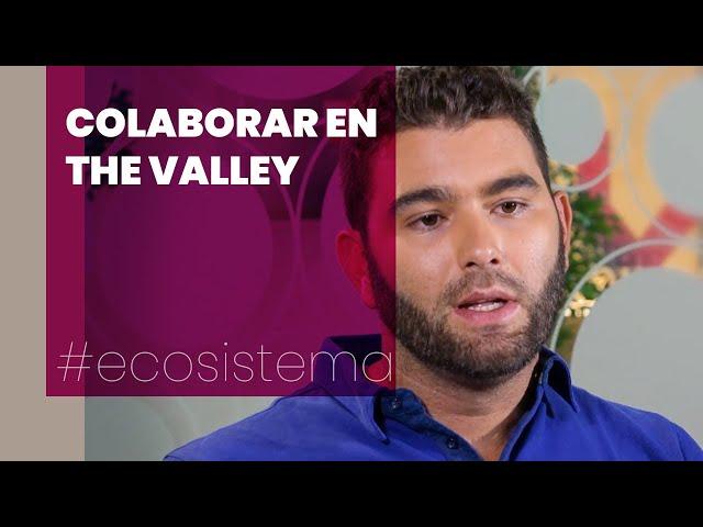 Bernardo Montero - The Valley