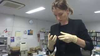 20140829 Perovskite Solar Cell with Dr. Cojocaru