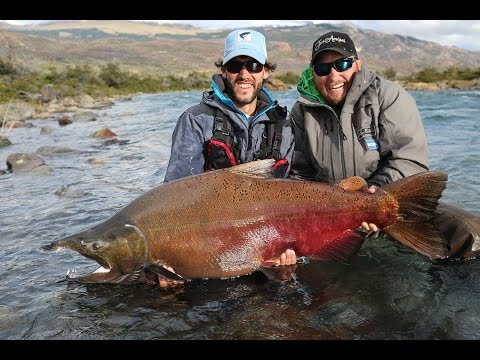 Glaciar Kings - King Salmon Fishing In Patagonia