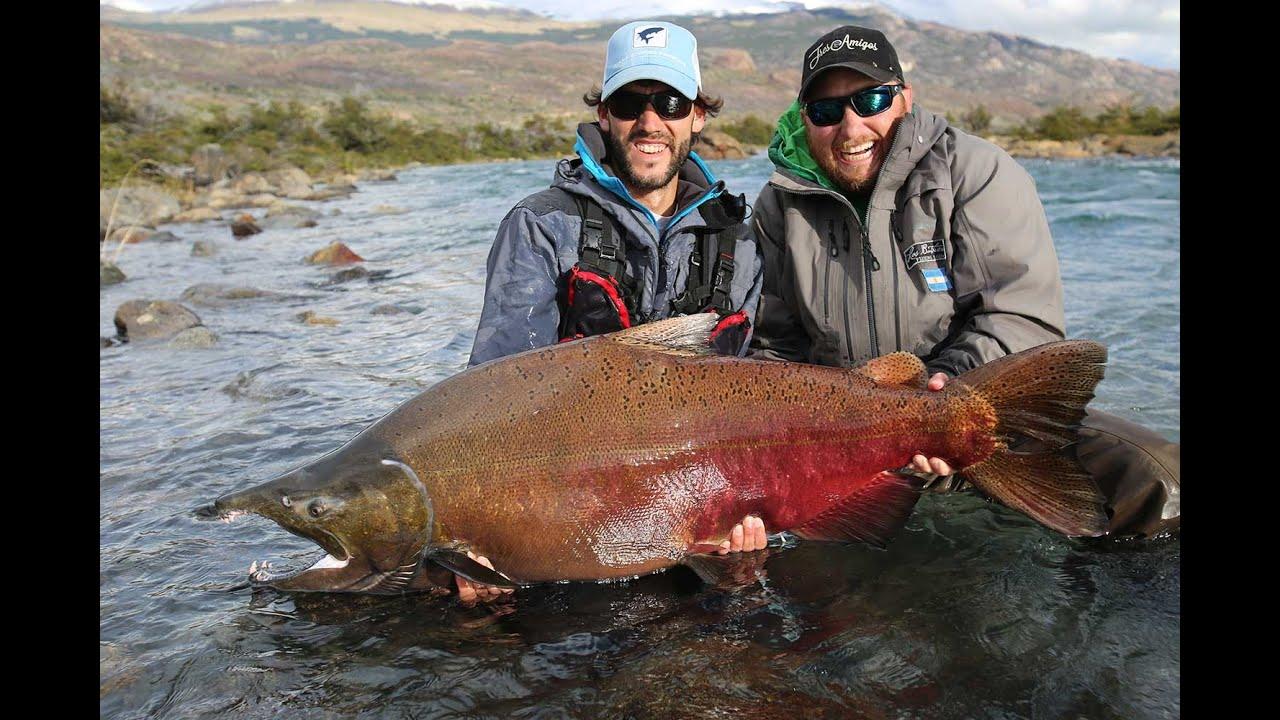 Glaciar Kings - King Salmon Fishing in Patagonia - YouTube