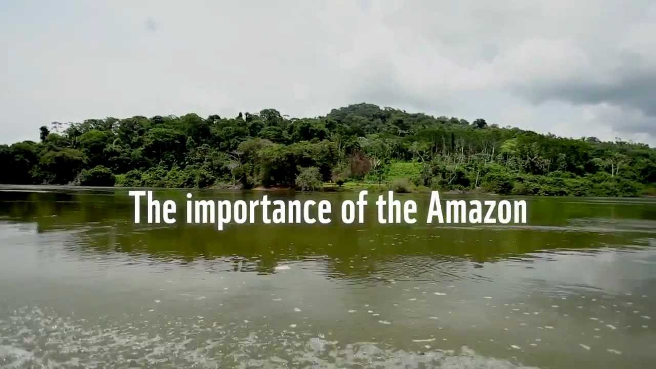 The importance of the Amazon to the world - YouTube