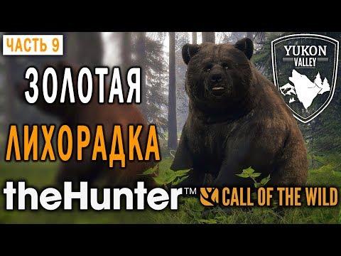 theHunter Call of the Wild #9 🐺 - Золотая Лихорадка - Долина Юкона, Аляска