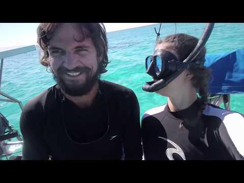 Free Diving Ningaloo - Free Range Sailing Ep 3