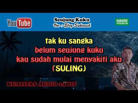 Seujung Kuku Versi Aulia Nada Pria Lagu MP3 dan MP4 Video