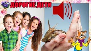 Обращение к детям, моим подписчикам и не только, которые смотрят мои видео об улитках!